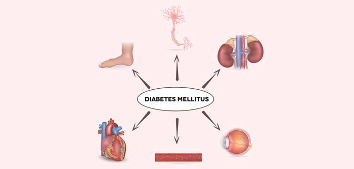 Fettsucht Diabetes mellitus: wie zu hohes Gewicht krank machen kann