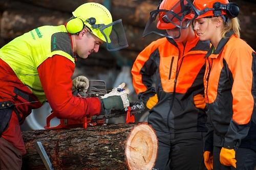 Selbstverständlich gehört das Vorbereiten von Holz zum Zwecke des Verkaufs (inklusive der dazu notwendigen Kenntnisse für den Umgang mit dem Genutzten Gerät) auch zum Aufgabenbereich des Forstwirts. In erste Linie dient er aber dem Erhalt des Waldes und der Natur im Allgemeinen. (#05)