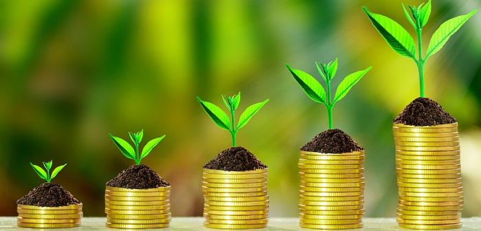 Seed Funding: Definition, Chancen und Risiken