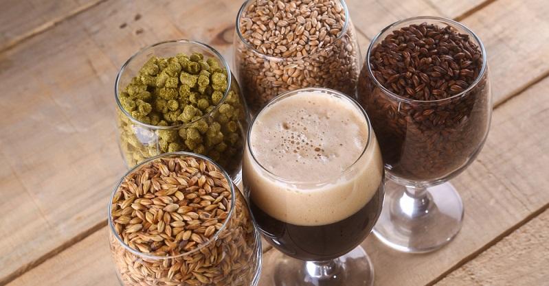 Zutaten für das Bier sind: Hopfen Hefe Malz oder Malzextrakt Kräuter und Gewürze Zucker