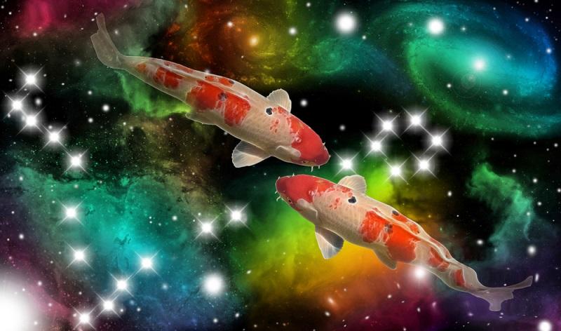 Sternzeichen Fische: Kein anderes Sternzeichen ist so gefühlvoll, kein anderes so hilfsbereit.