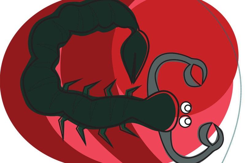 Skorpione wirken oft so, als stünden sie kurz vor einer wichtigen Aufgabe. Sie sind immer auf dem Sprung!