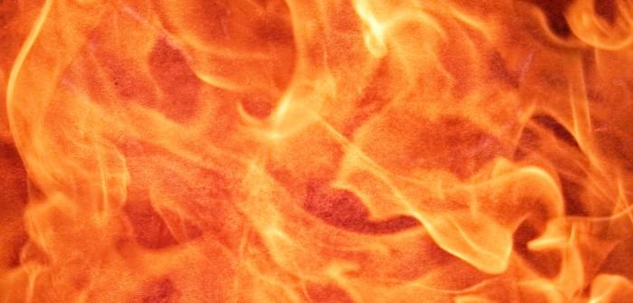 Sternzeichen im Beruf: Element Feuer  (Grafik: shutterstock - Triff)