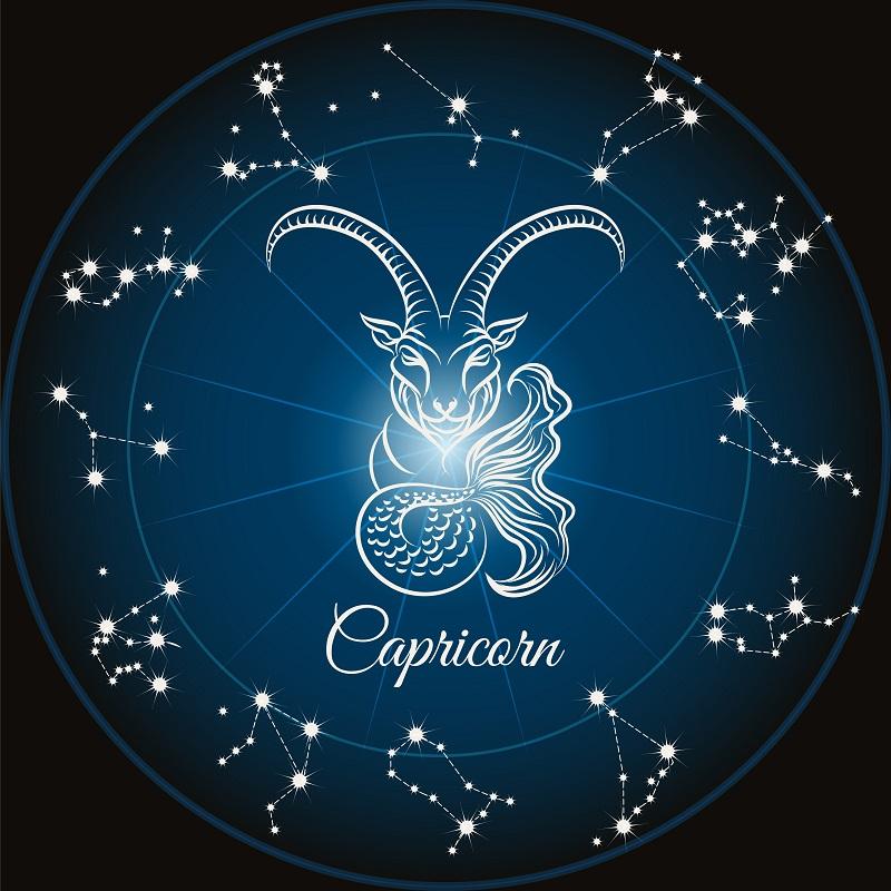Steinbock frau horoskop 2019 liebe