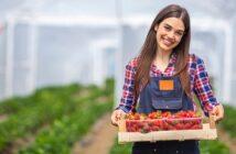 Saisonarbeit: Urlaub, Krankheit & mehr! ( Foto: Shutterstock-Dragana Gordic )