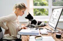 Bürohunde: Warum wir sie brauchen und wann der Chef nicht 'Nein' sagen kann. (Foto: Shutterstock-_Andrey_Popov )