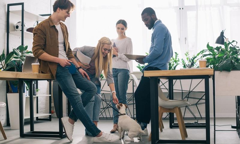 Barker hat im Jahr 2012 eine Studie zu Vierbeinern am Arbeitsplatz veröffentlicht und dabei herausgefunden, dass die Mitarbeiter mit Bürohund deutlich weniger gestresst waren als die Angestellten ohne Hund im Büro .( Foto: Shutterstock-_LightField Studios)